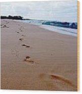 Beaches 04 Wood Print by Earl Bowser