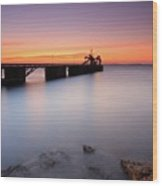 Beautiful Beach And Bridge Wood Print by Oscar Gonzalez