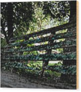 Benched Wood Print by Tammy Cantrell