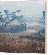 Big Meadows In Winter Wood Print by Thomas R Fletcher