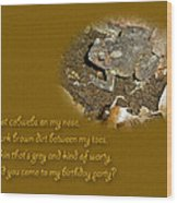 Birthday Party Invitation - Common Toad - Child Wood Print by Mother Nature