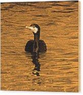 Black Bird On Surise Wood Print by Radoslav Nedelchev