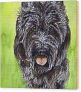 Black Scottish Terrier Wood Print by Cherilynn Wood