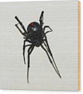 Black Widow Polka Dots Wood Print by David Waldo