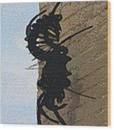 Black Widow Spider Art Wood Print by Karon Melillo DeVega