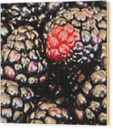 Blackberries  Wood Print by JC Findley