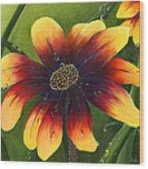 Blanket Flower Wood Print by Trister Hosang