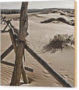 Bleak Wood Print by Heather Applegate