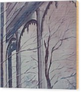 Blue Snow Wood Print by Patsy Sharpe