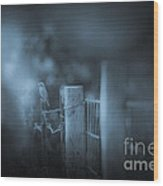 Bluebird Wood Print by Kim Henderson