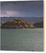Boat On Loch Sunart, Scotland Wood Print by John Short