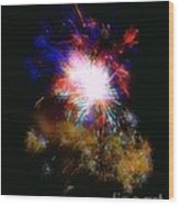 Born On The 4th Of July Wood Print by Dale   Ford