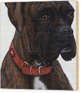 Brindle Boxer Wood Print by Michelle Harrington