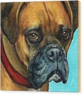 Brown Boxer On Turquoise Wood Print by Dottie Dracos