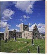 Burrishoole Friary, Co Mayo, Ireland Wood Print by The Irish Image Collection