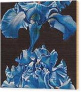 Byzantine Ballet Wood Print by Joyce Hutchinson