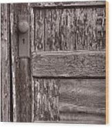 Cabin Door Bw Wood Print by Steve Gadomski