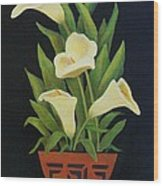 Calla Lilies Wood Print by Jane Landry  Read