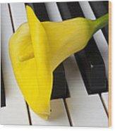 Calla Lily On Keyboard Wood Print by Garry Gay