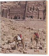 Camels In Front Of The Royal Tombs Petra Wood Print by Martin Child