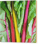 Candy Color Greens Wood Print by Susan Herber