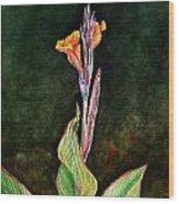 Canna Lily Wood Print by Irina Sztukowski
