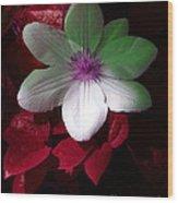 Christmas Cheer Wood Print by Joyce Hutchinson