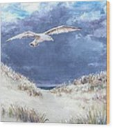 Cloudy With A Chance Of Seagulls Wood Print by Jack Skinner