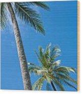 Coconuts  Wood Print by Atiketta Sangasaeng