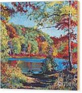 Color Rich Harriman Park Wood Print by David Lloyd Glover