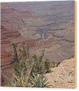 Colorado River Grand Canyon National Park Arizona Usa Wood Print by Audrey Campion