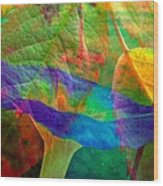 Colors Of Autumn Wood Print by Shirley Sirois