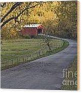 Country Lane - D007732 Wood Print by Daniel Dempster