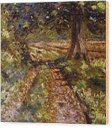 Country Lane Wood Print by John  Nolan