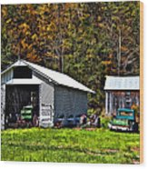 Country Life Wood Print by Steve Harrington