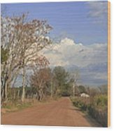Country Road Wood Print by Jan Amiss Photography