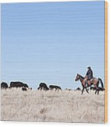 Cowboy And Cattle Wood Print by Cindy Singleton