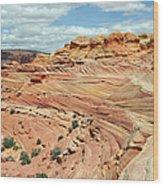 Coyote Buttes Wood Print by David Hogan