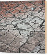 Cracked Earth Wood Print by Athena Mckinzie