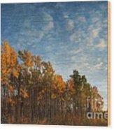 Dressed In Autumn Colors Wood Print by Priska Wettstein
