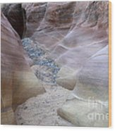 Dry Creek Bed 3 Wood Print by Bob Christopher