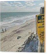 Dunes Rebuilding Keep Off Grass And Dune Area Cape Cod Wood Print by Matt Suess