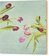Eager For Spring Wood Print by Priska Wettstein