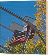 Empty Chair On Ferris Wheel Wood Print by Thom Gourley/Flatbread Images, LLC