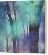 Enchanted Forest. Painting With Light Wood Print by Jenny Rainbow