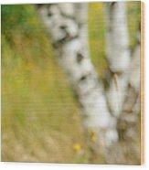 Essential. Summer Time. Impressionism  Wood Print by Jenny Rainbow