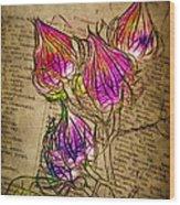 Faerie Caps Wood Print by Judi Bagwell