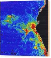 Fal-col Satellite Image Of Coastal Wood Print by Dr. Gene Feldman, NASA Goddard Space Flight Center