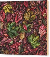 Fall Autumn Leaves Wood Print by John Farnan