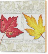 Fall Leaf Panel Wood Print by JQ Licensing
